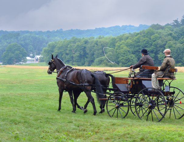 Farmers returning from the Amish organic's market in the year in Akron, OH, USA, 25.07.2009